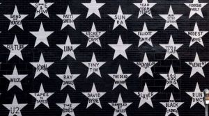 Ist ave stars