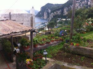 roof-gardens